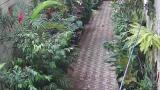 Vizinhos exigem retirada de vasos de plantas no Beco do Cinema