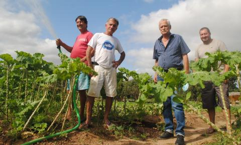 Horticultores de Maria das Graças viram agricultores familiares