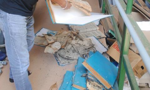 Documentos históricos devorados por traças e cupins em Colatina