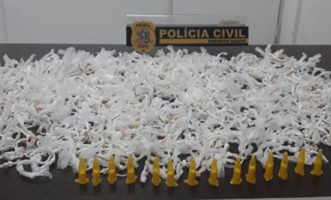 Polícia apreende 1.960 pedras de crack em Colatina